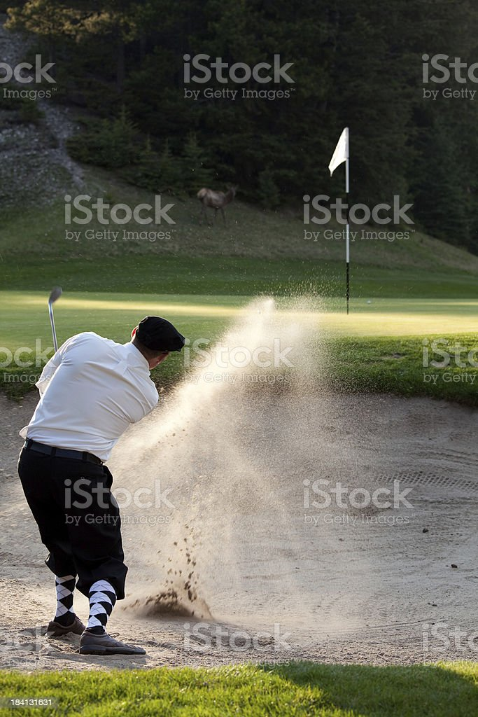 Classy Golfer Hitting Bunker Shot stock photo