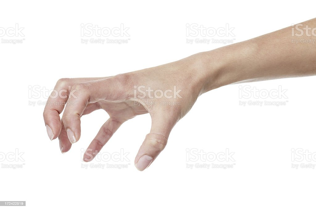 Claw royalty-free stock photo