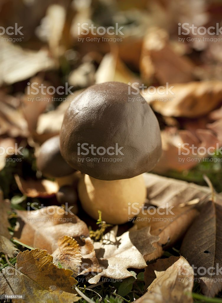 Clay Mushroom royalty-free stock photo