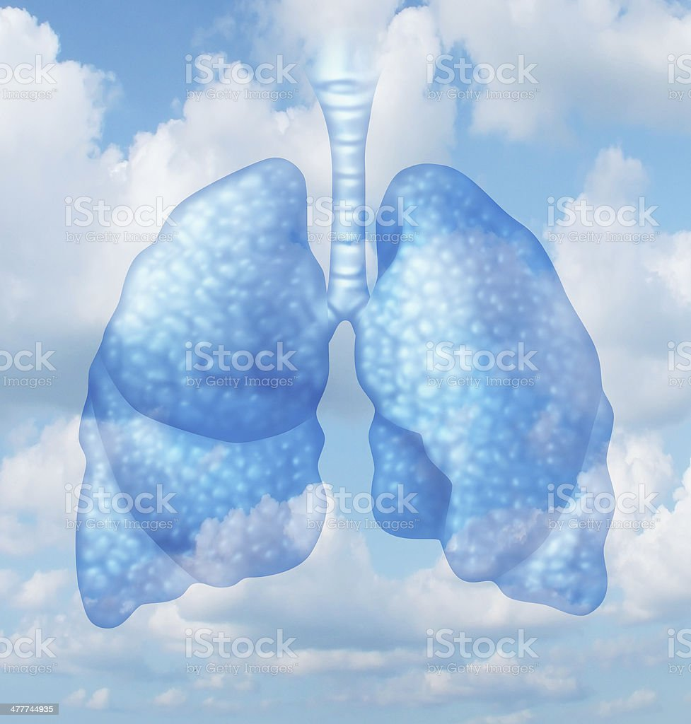 Clean Air stock photo