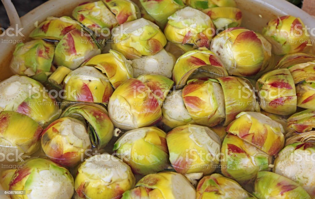 clean bottoms of artichokes prepared by the cook stock photo