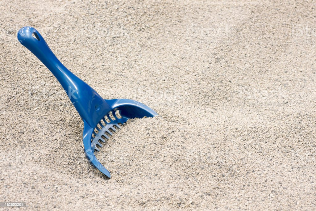 Clean cat litter with a blue scoop stock photo