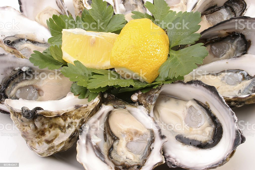 clean dozen oysters royalty-free stock photo