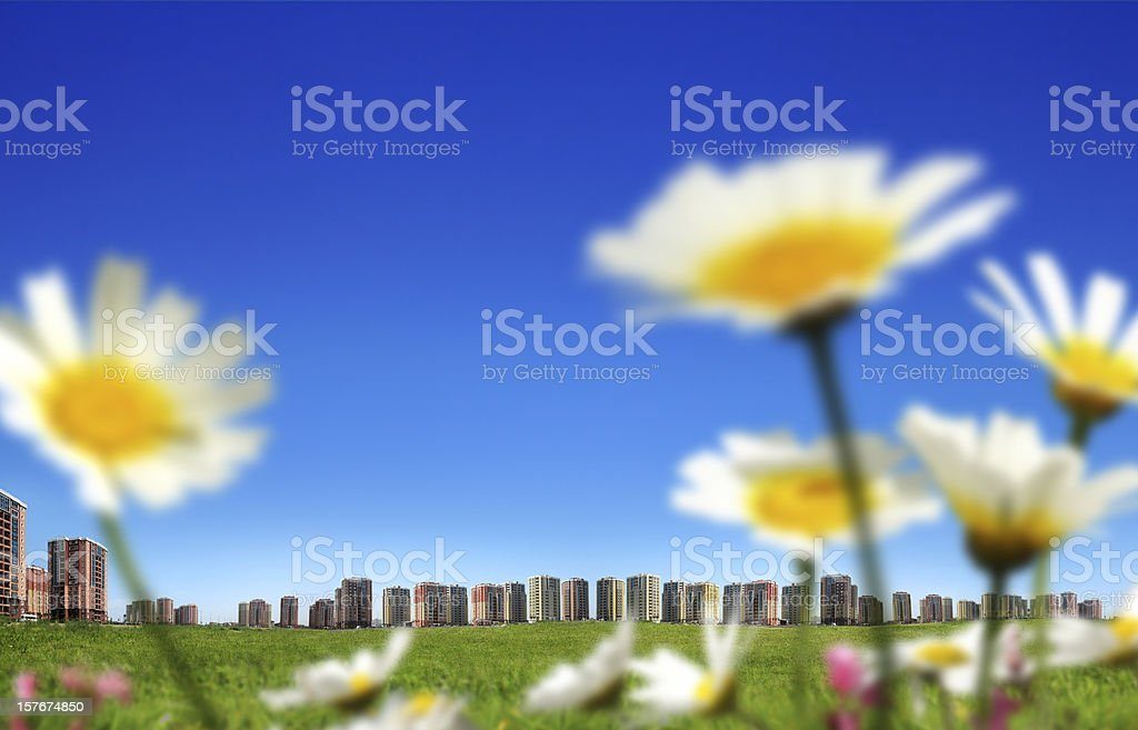 clean environment royalty-free stock photo