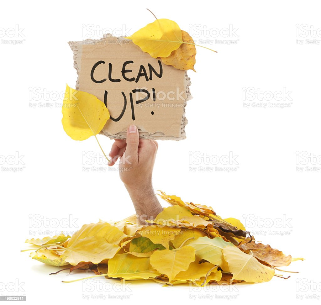 Clean Up - Sign in Hand Out of Autumn Leaves stock photo