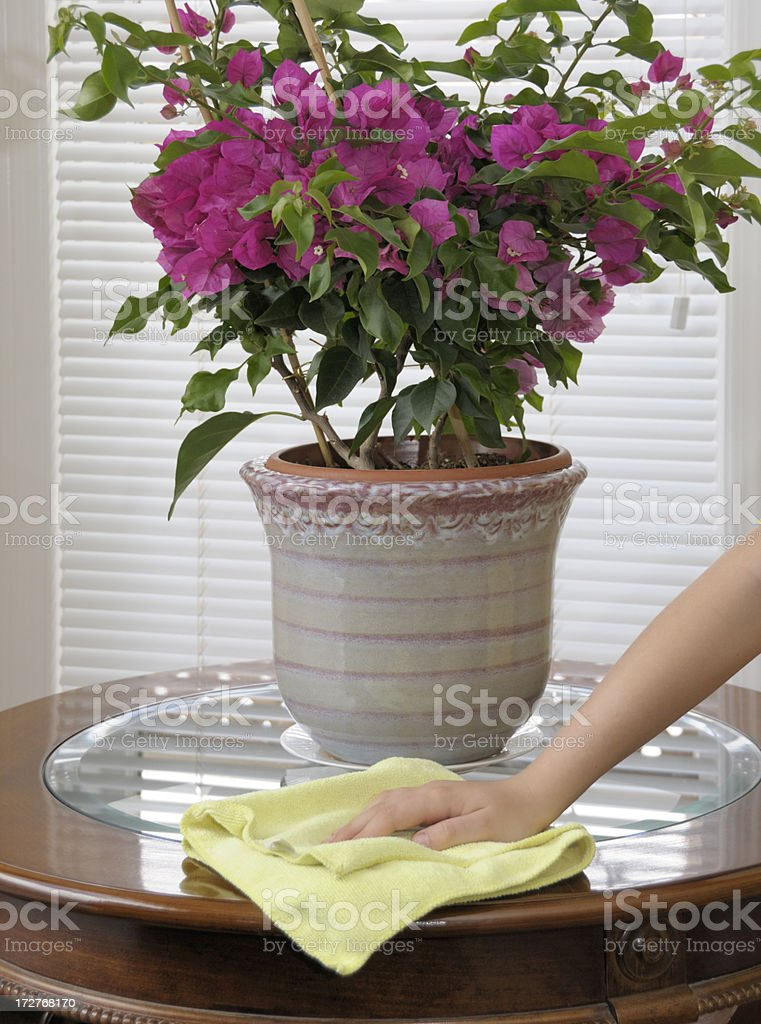 Cleaner greener home, hand dusting with micro fibre cloth royalty-free stock photo