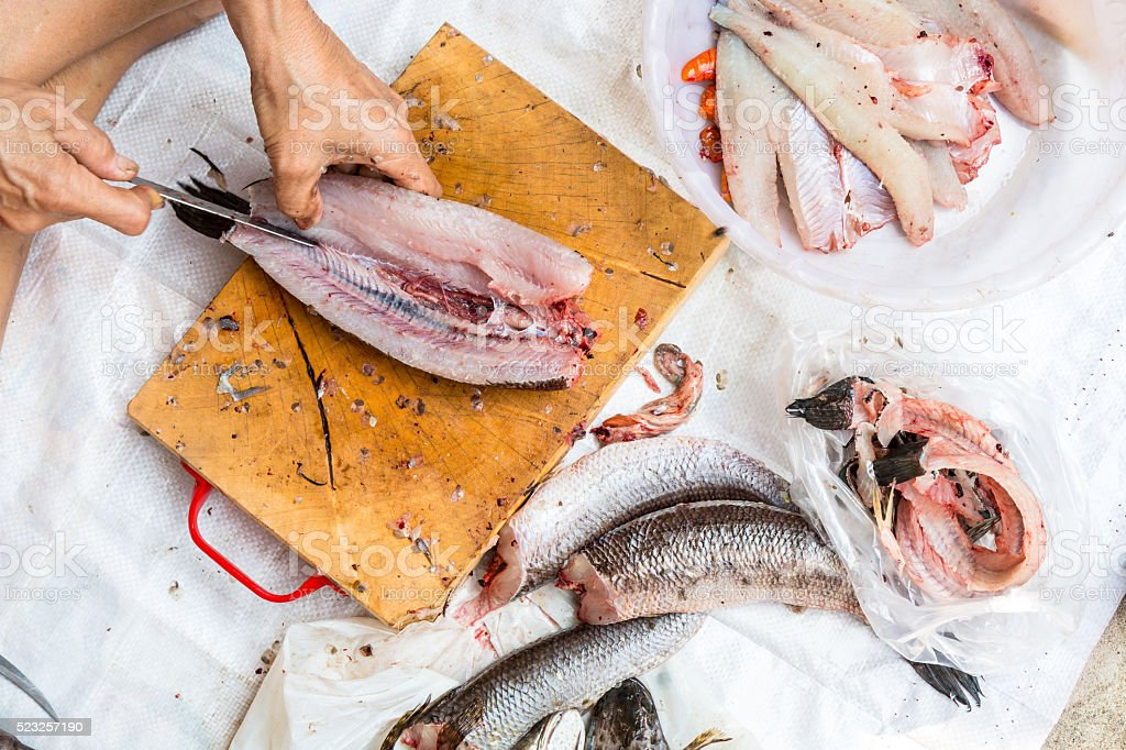 Cleaning and filleting a fresh fish. stock photo