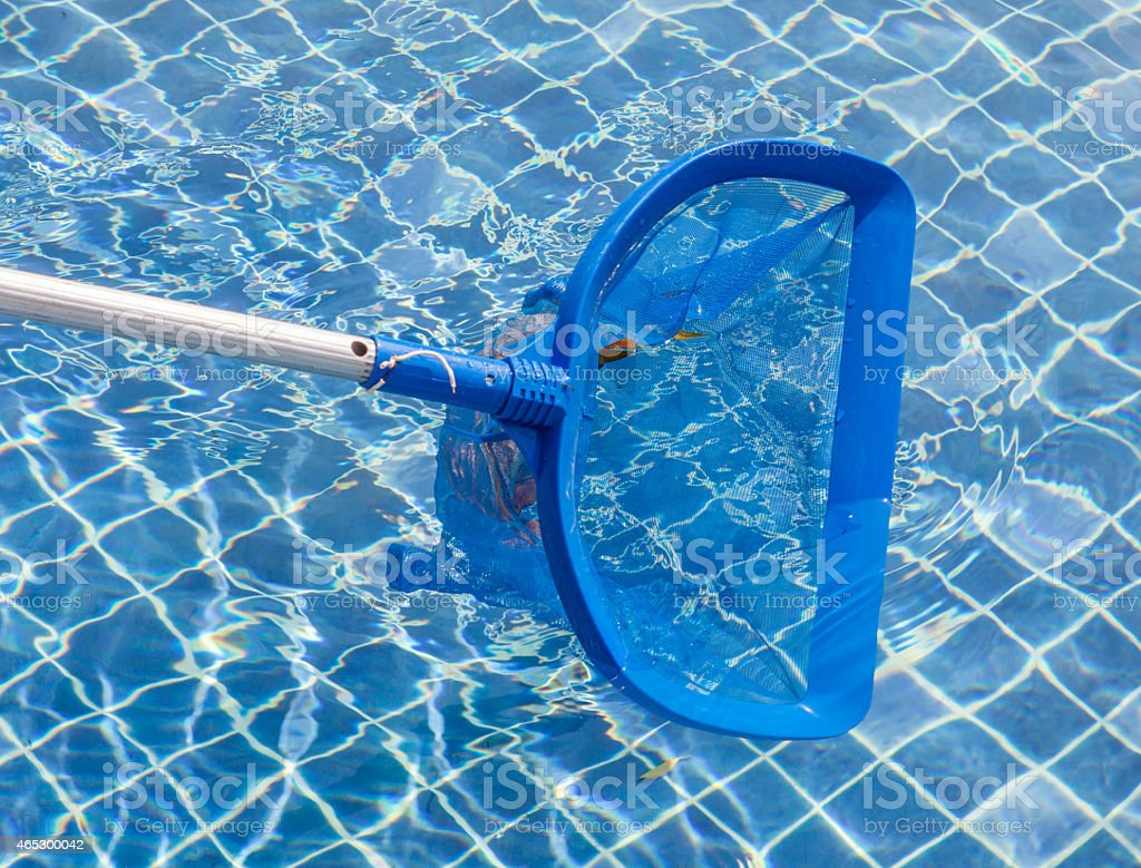 Cleaning and maintenance swimming pool with cleaning net, blue s stock photo