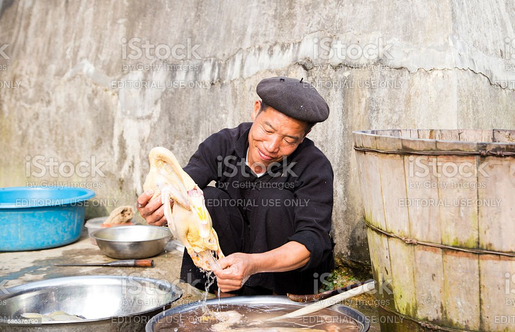 Cleaning chicken stock photo