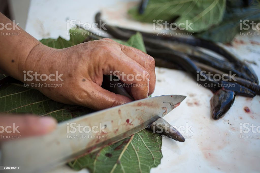 Cleaning eel's stock photo