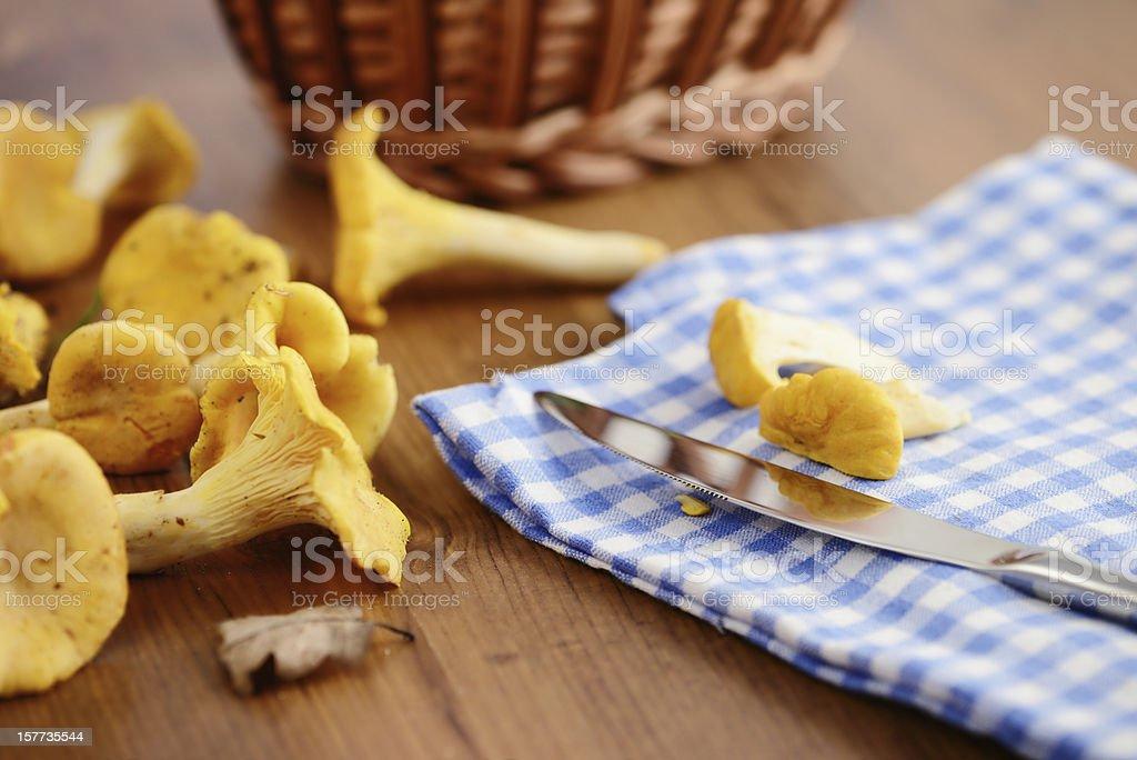 cleaning golden chanterelle mushroom stock photo