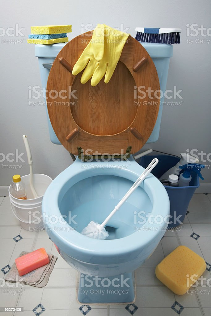 Cleaning House - Dirty Job royalty-free stock photo