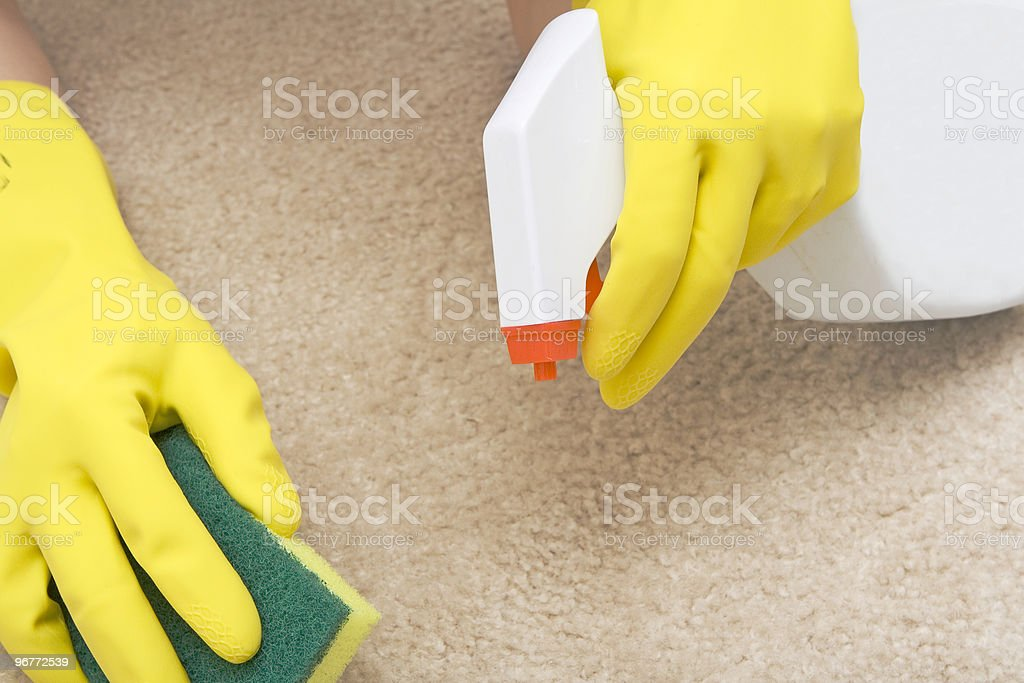 cleaning stain on a carpet royalty-free stock photo