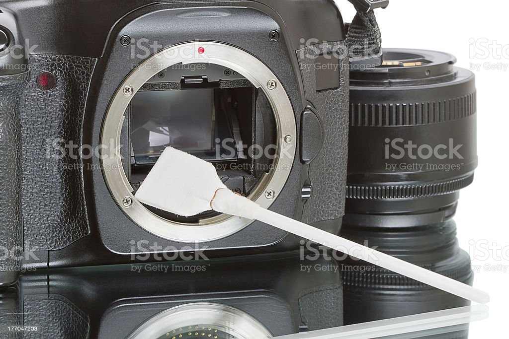 Cleaning the camera sensor royalty-free stock photo