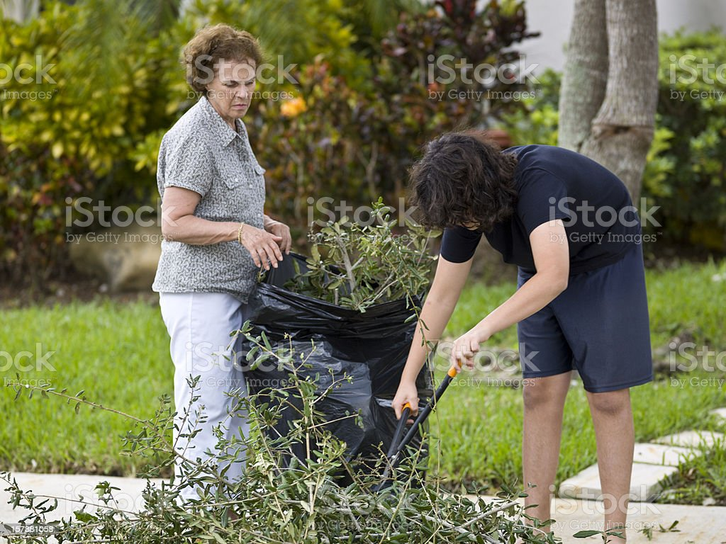 Cleaning the front-yard royalty-free stock photo