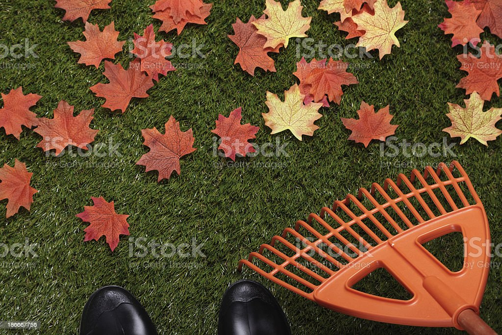 Cleaning The Garden royalty-free stock photo