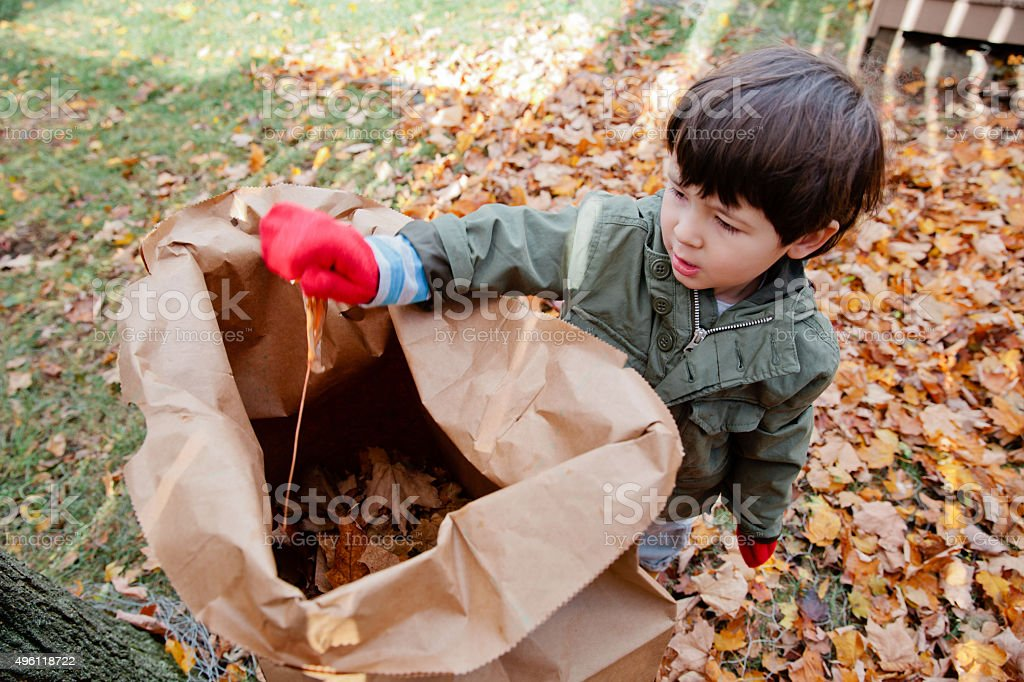 Cleaning up Leaves stock photo