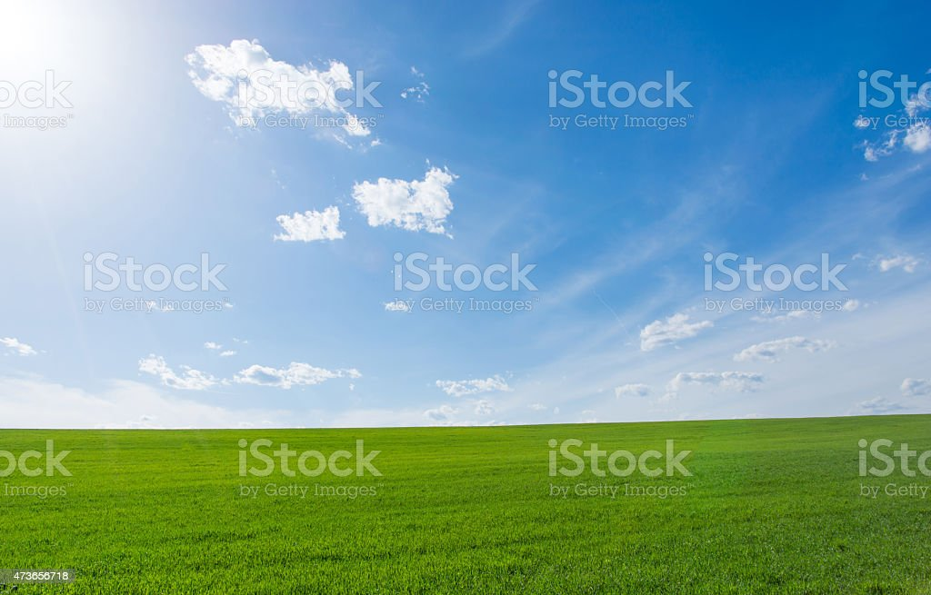 A clear green meadow against a bright blue sky stock photo