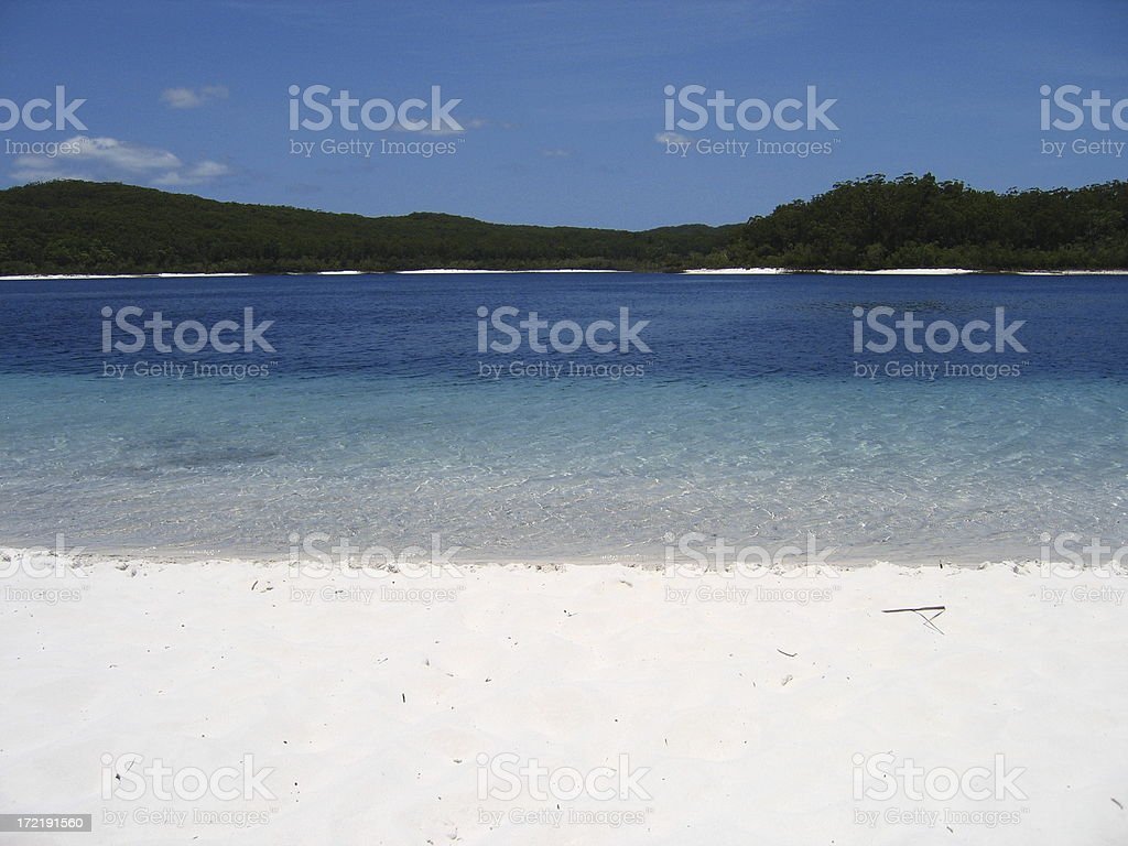 Clear Lake McKenzie / Fraser Island royalty-free stock photo