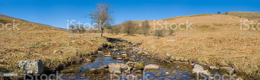 Clear mountain stream royalty-free stock photo
