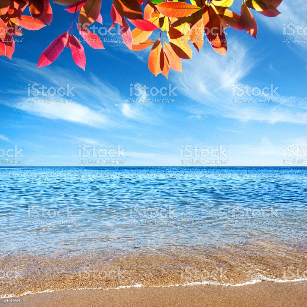 Clear Ocean stock photo