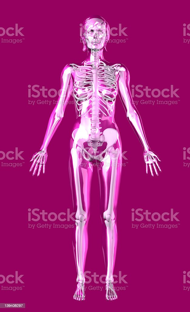 Clear Rose Woman with Skeleton Inside - includes clipping path royalty-free stock photo