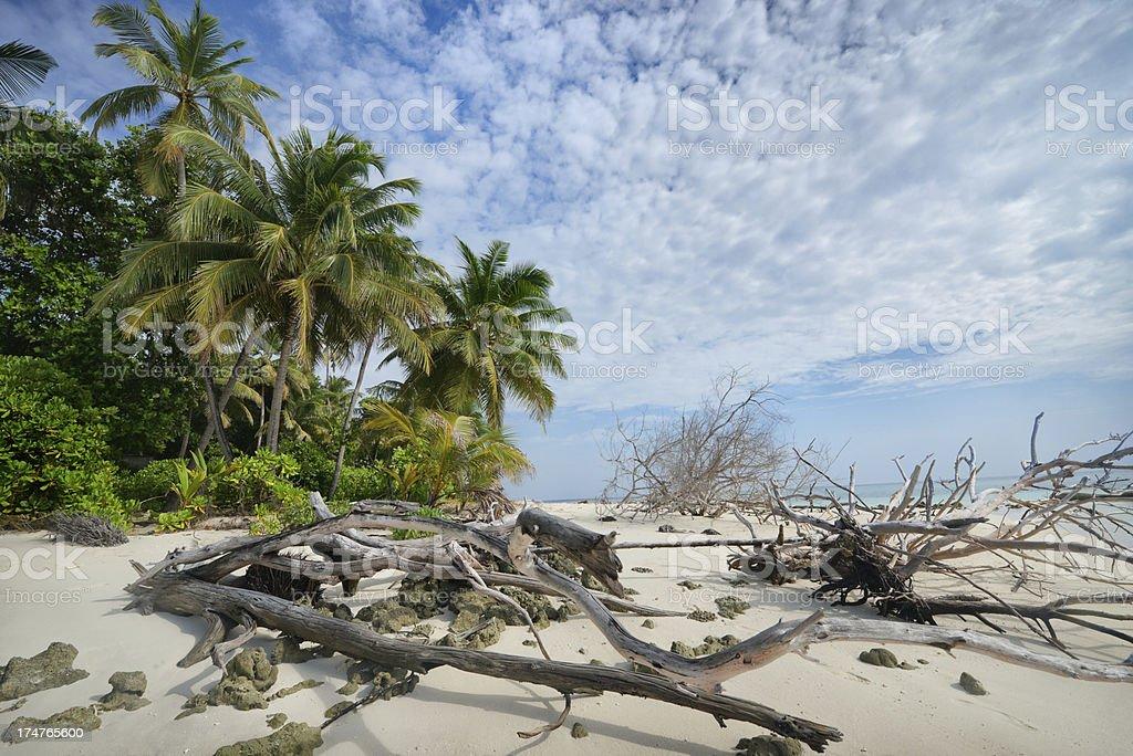 Clear the beach stock photo