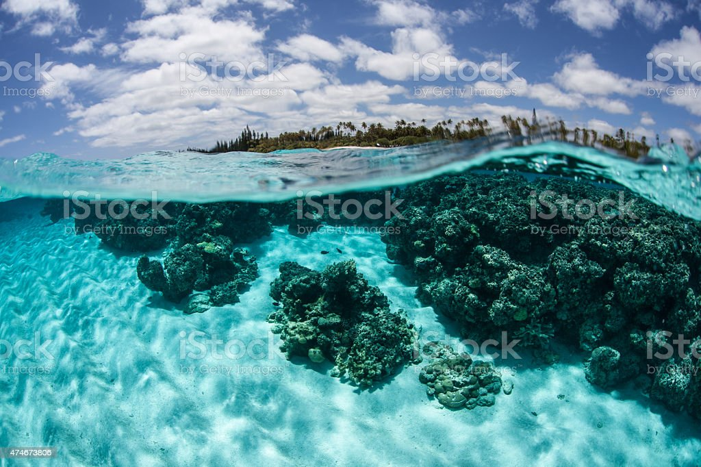 Clear Water and Tropical Island stock photo