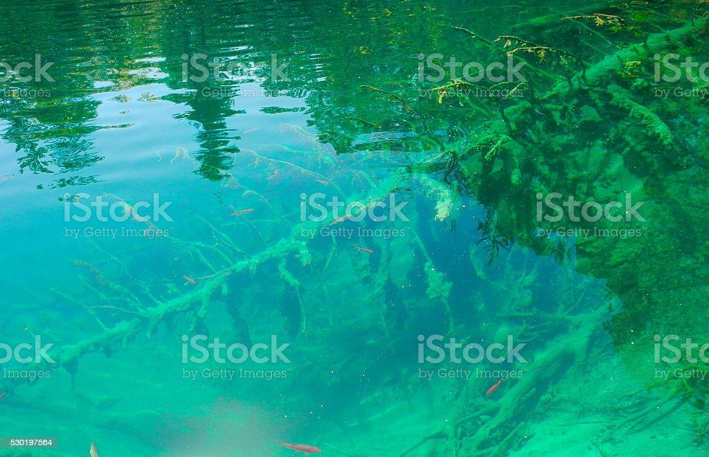 Clear water, Croatia.. stock photo