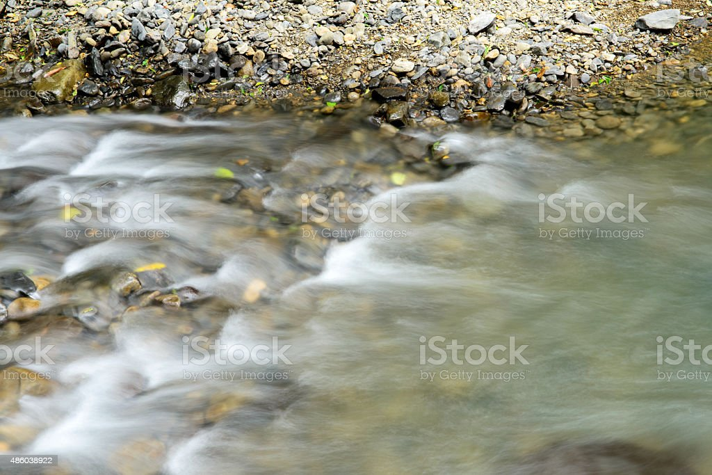 clear water of river in the forest stock photo