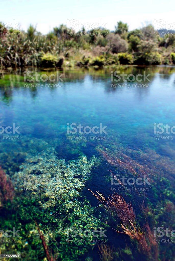 Clear Water, Pupu Springs, Takaka, New Zealand stock photo