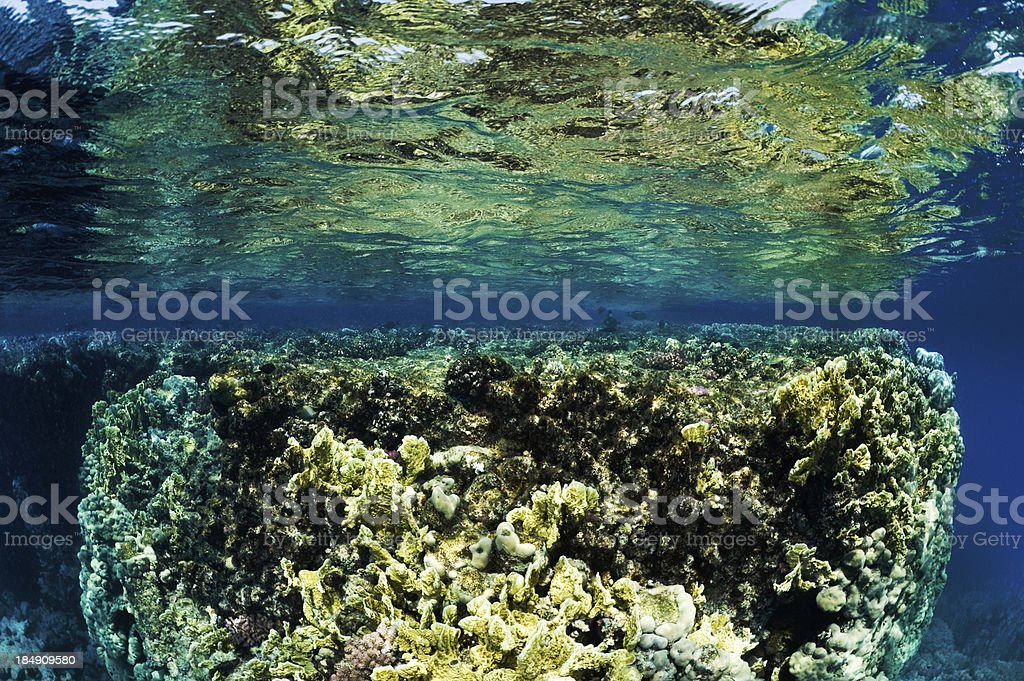 Clear Waters royalty-free stock photo