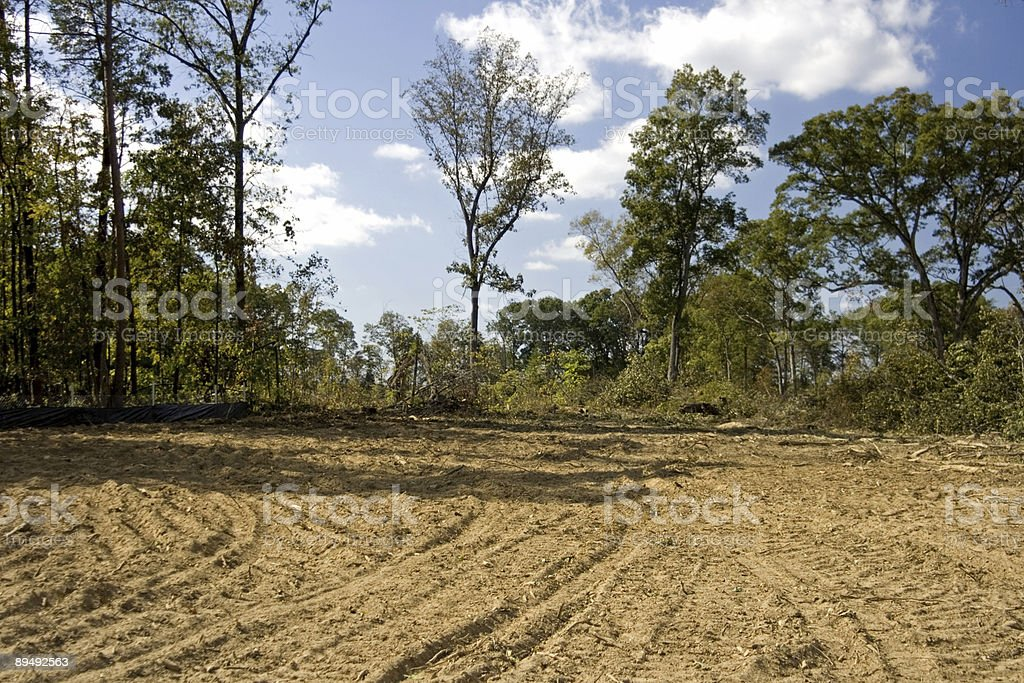 Cleared land ready for a new home royalty-free stock photo