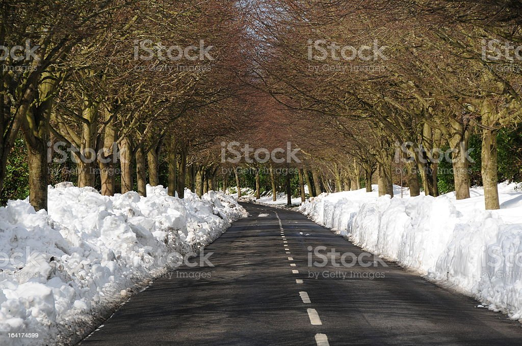 Cleared road, Jersey royalty-free stock photo