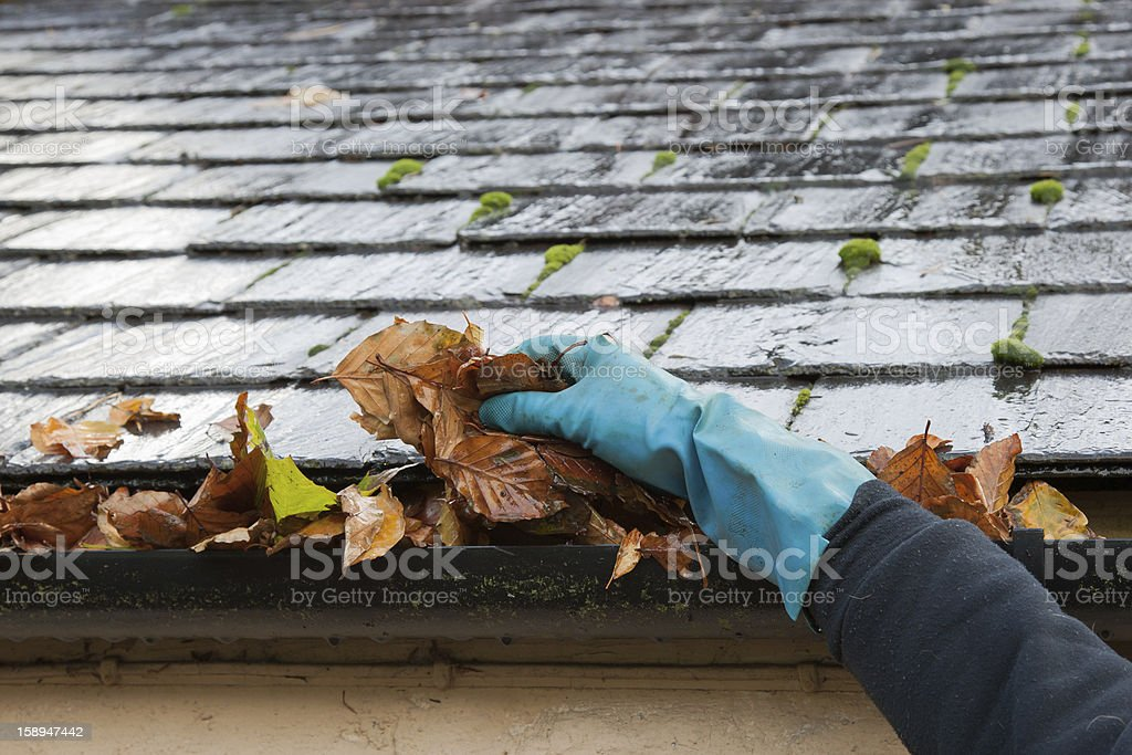Clearing autumn gutter blocked with leaves by hand stock photo