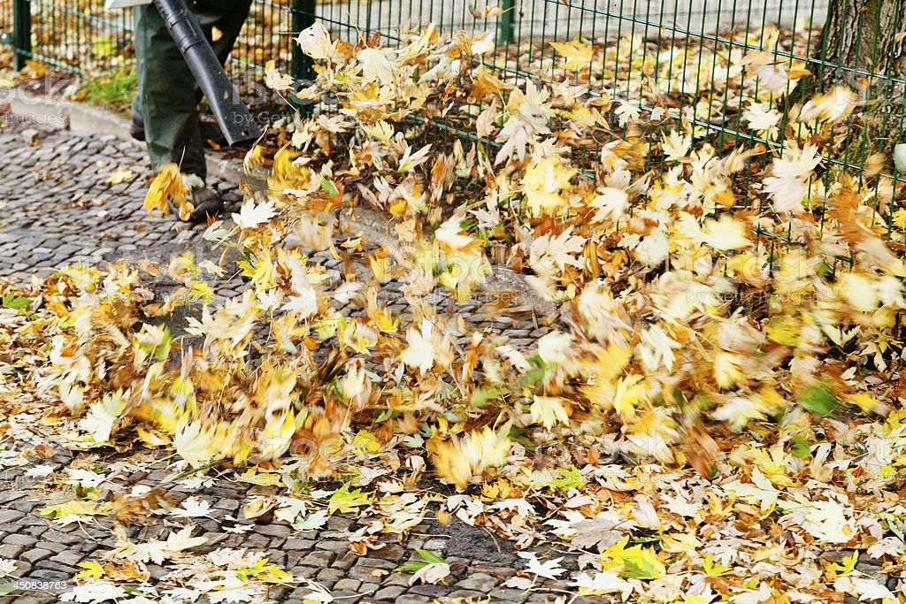 clearing of pavement from autumn leaves stock photo