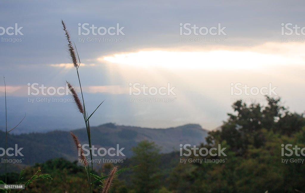 Четко горизонт облака лучи солнечного света в зеленый hill Стоковые фото Стоковая фотография