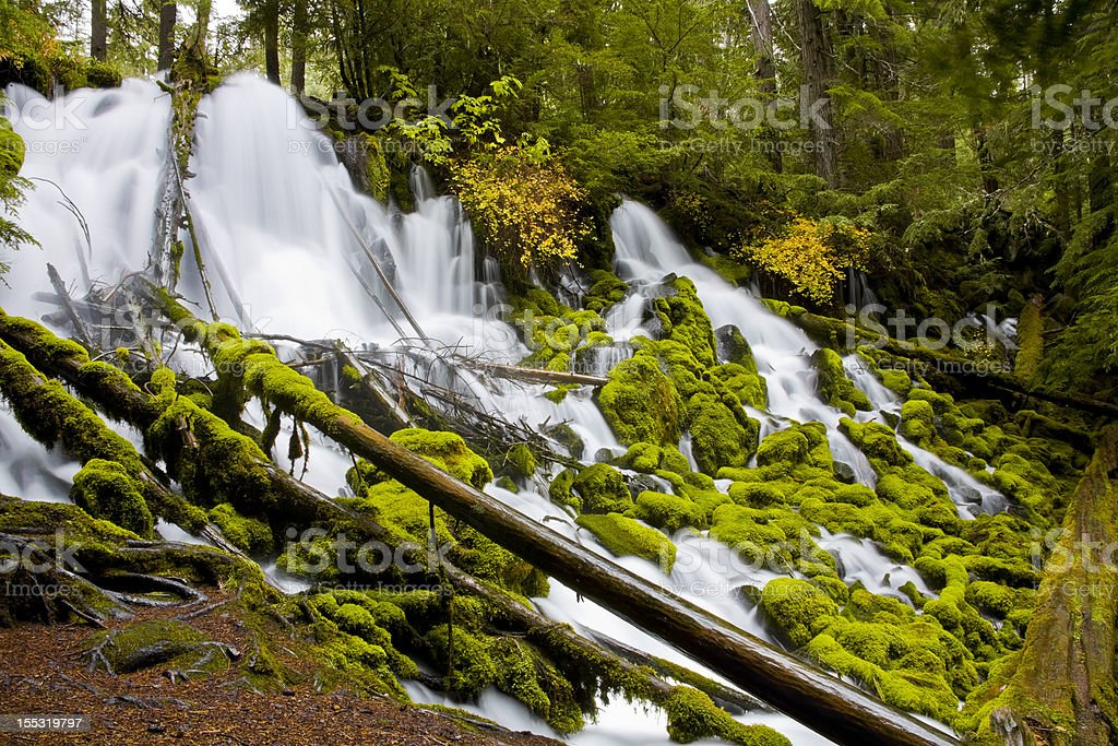 Clearwater Falls - Umpqua Scenic Byway stock photo