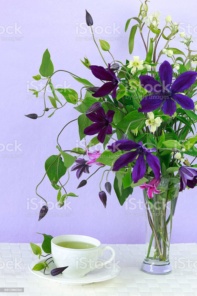 Clematis flowers and cup of green tea. stock photo