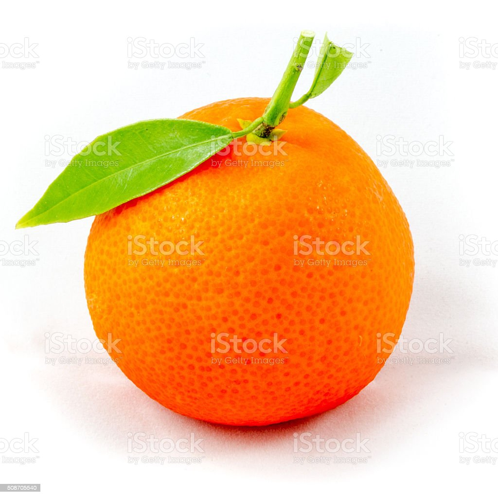 Clementine fruit stock photo