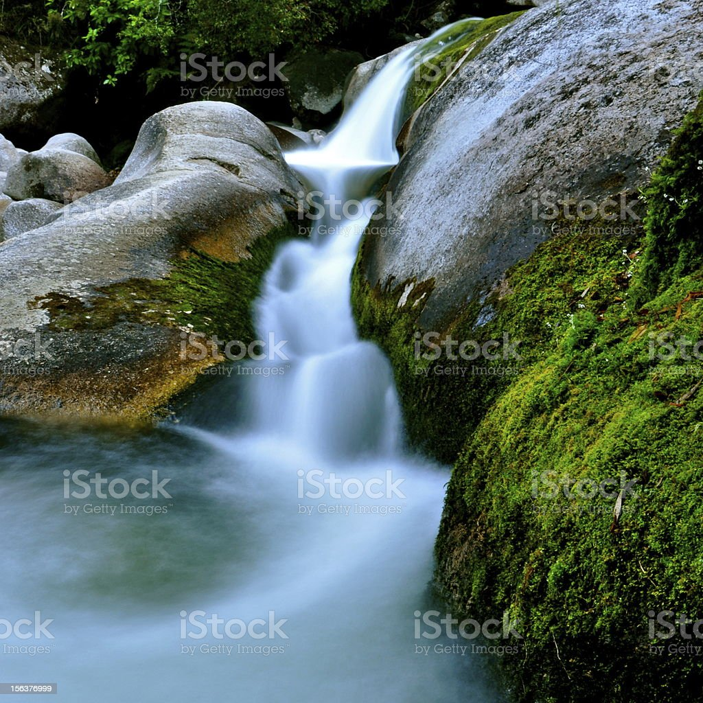 Cleopatra's Pool - Abel Tasman N.P., NZ stock photo
