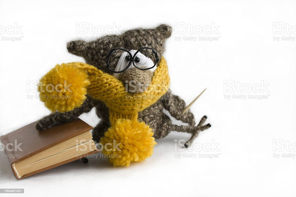 Clever owl royalty-free stock photo