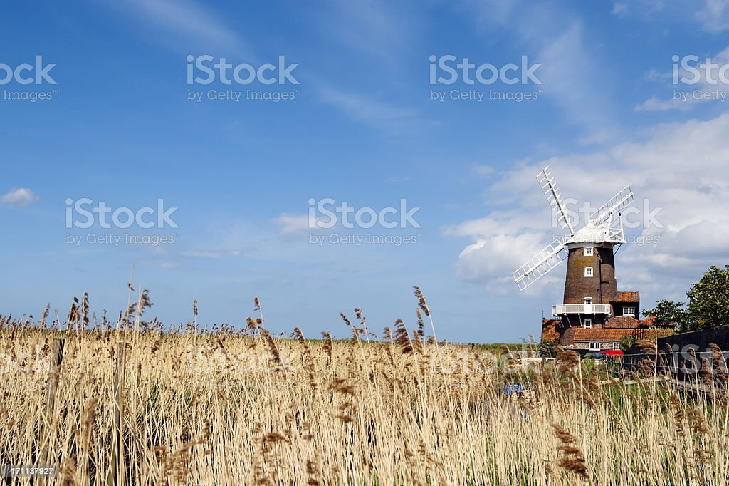 Cley mill with reed beds royalty-free stock photo