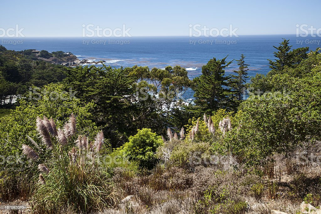 Cliff overlooking Big Sur, California stock photo
