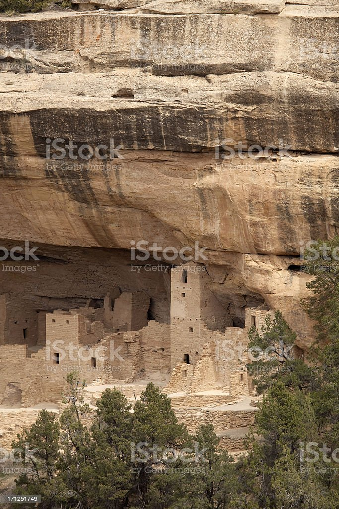 Cliff Palace Ruins stock photo
