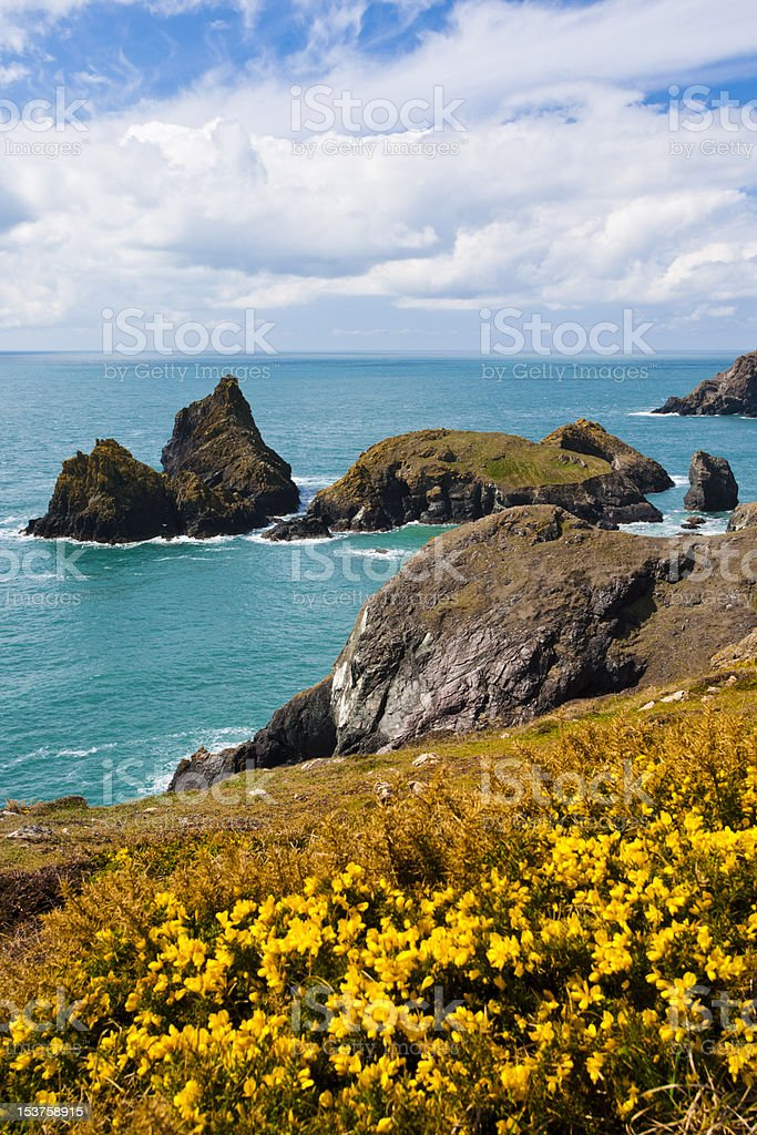 Cliffs at Kynance Cove Cornwall stock photo