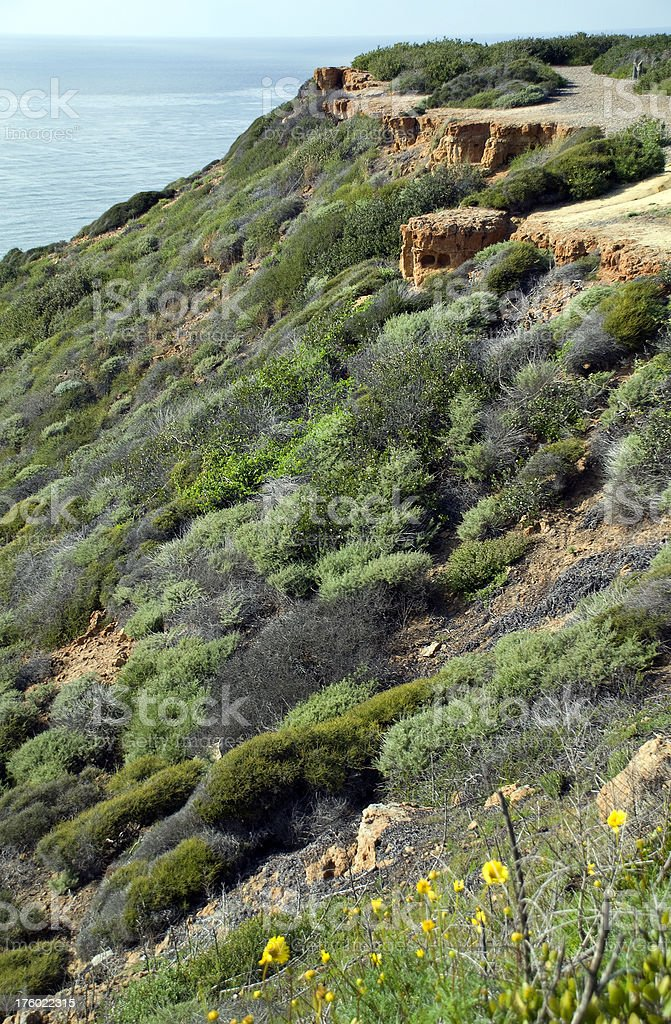 Cliffs of Point Loma stock photo