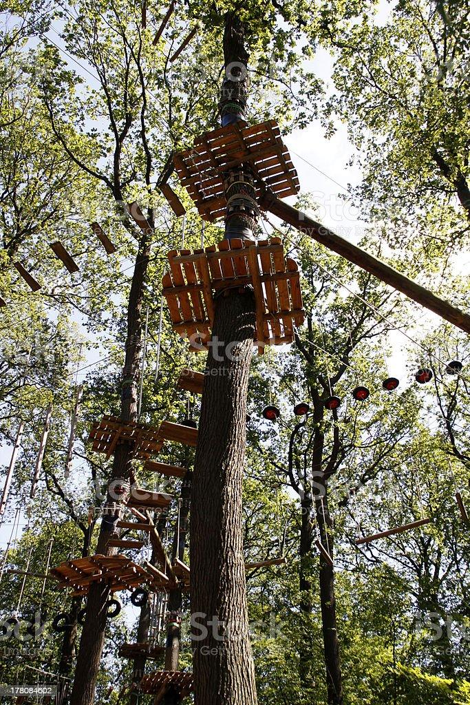 Climbing forest on the Kluet (Hamelin) stock photo
