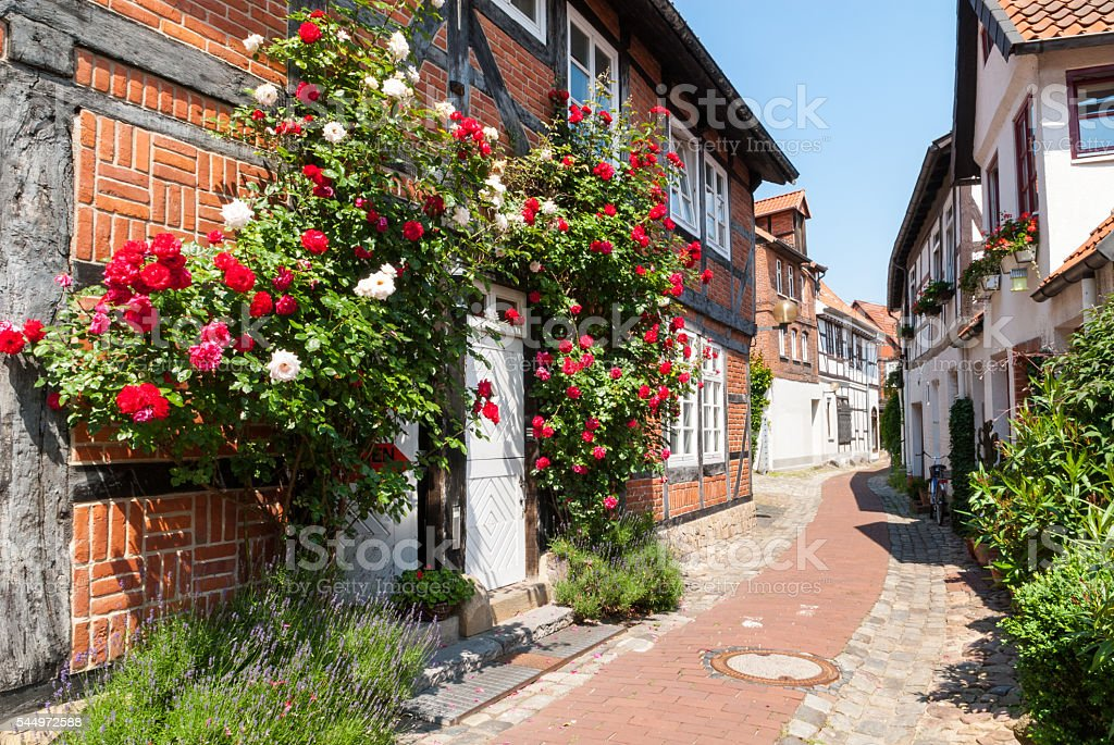 Climbing roses in front of a half-timbered house stock photo