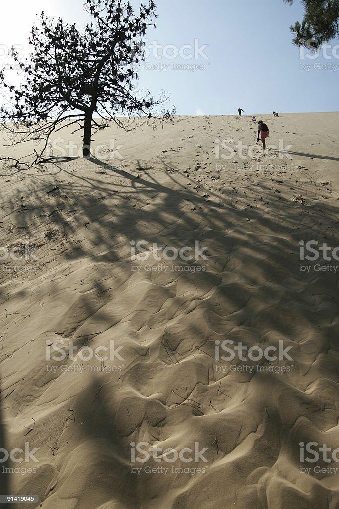Climbing the dune. stock photo